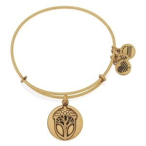 Alex and Ani Unexpected Miracles